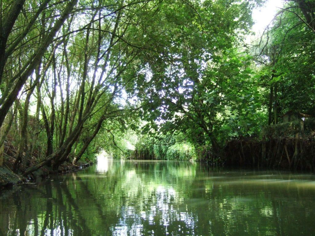 Vue sur le Canal de la Garette à Coulon