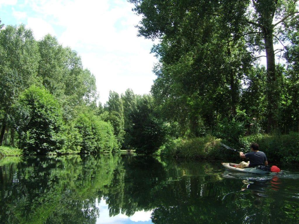 Kayak-entre-Marais-Pin-et-Magné-compressor