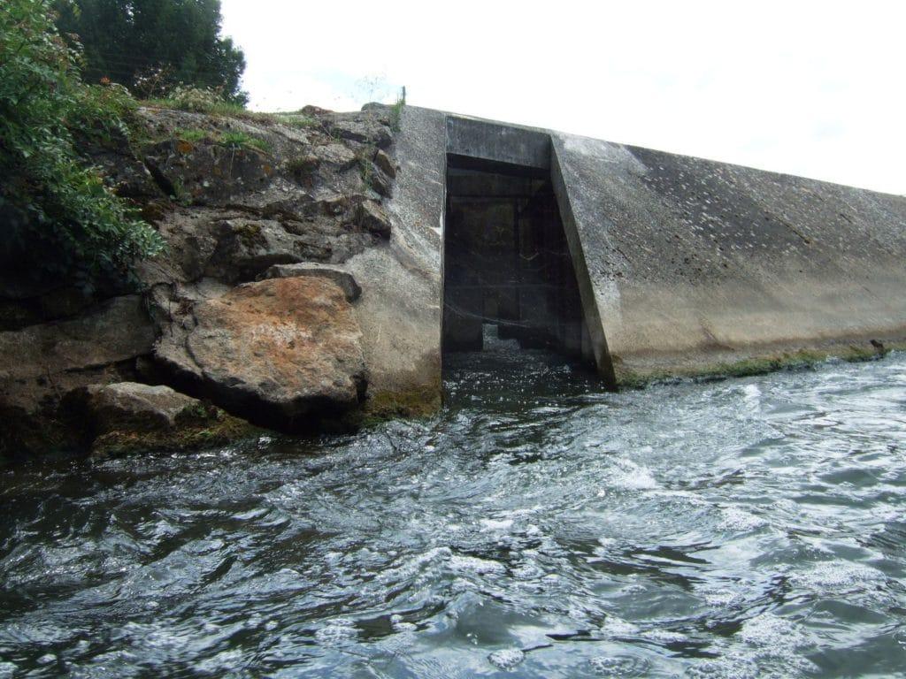 Passe-à-poisssons-du-Marais-Pin-compressor